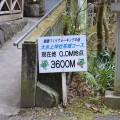 大水上神社