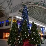 南部3町ドームクリスマスツリー点灯式