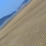 父母ヶ浜海岸