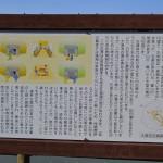 大塚池古墳