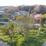 丸亀・金比羅街道 公文の茶堂跡
