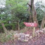 飯野山の日 おじょもの足跡