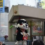 カーフリーデー2015 和み柴っこ